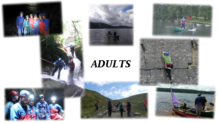 Collage Adults
